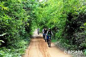 Cycling around Angkor – image 1