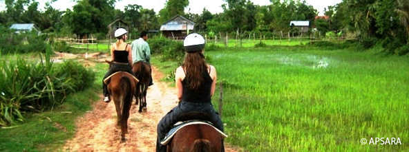 Horse riding in the countryside – image 3