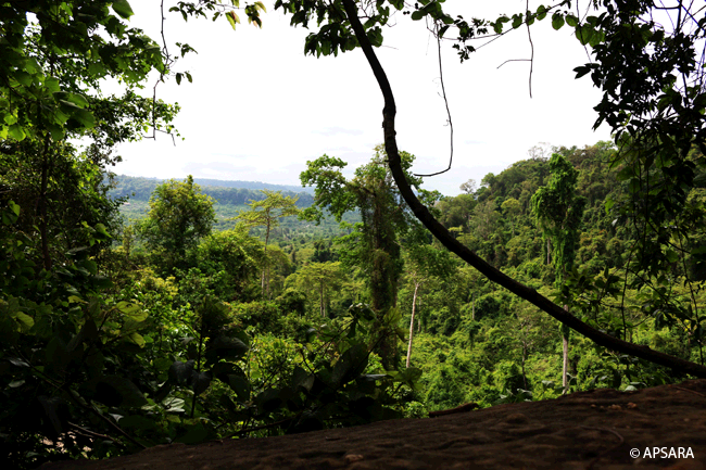 Kulen Mountain – image 4