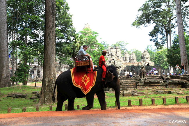 Ride an elephant – image 1