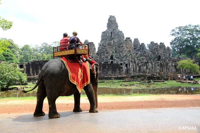 Ride an elephant – image 2