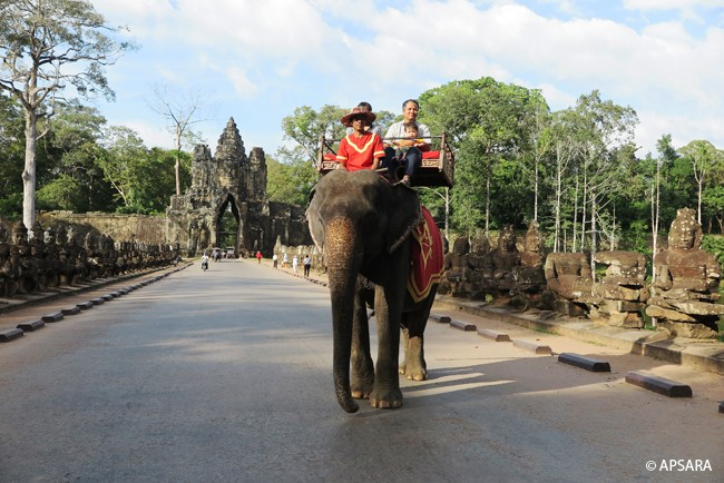 Ride an elephant – image 3