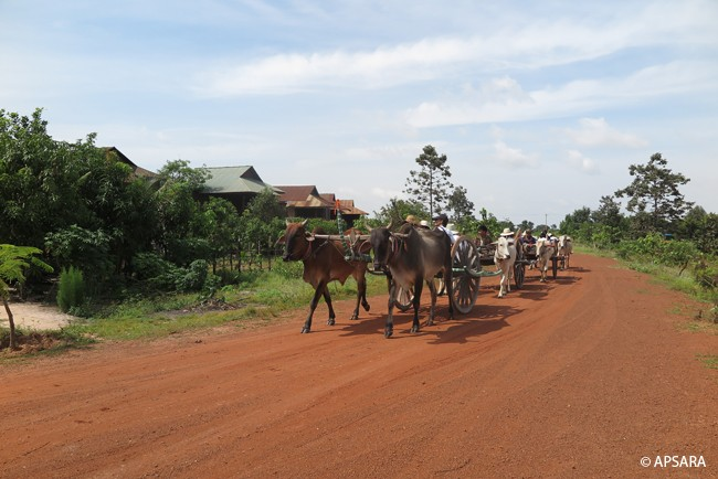 Ride an ox cart – image 2